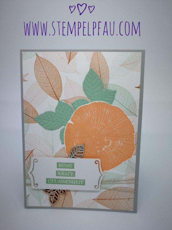 Produktpaket Kraft der Natur / Waldset Stampin' Up!