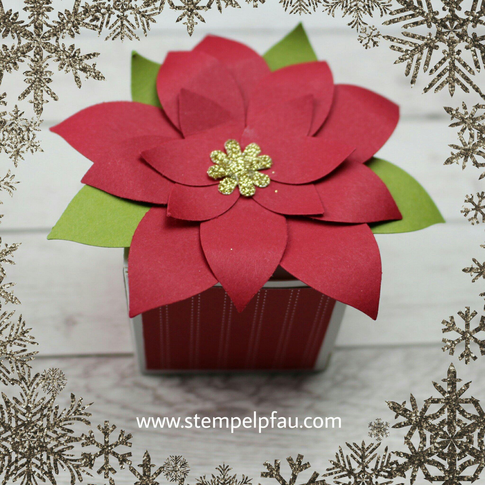 Kleine Goodies für liebe Menschen. Weihnachtsstern mit der Elementstanze Festliche Blüte von Stampin' Up!